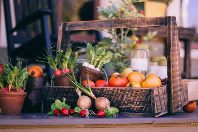 What is the Perfect diet planning to overcome addiction